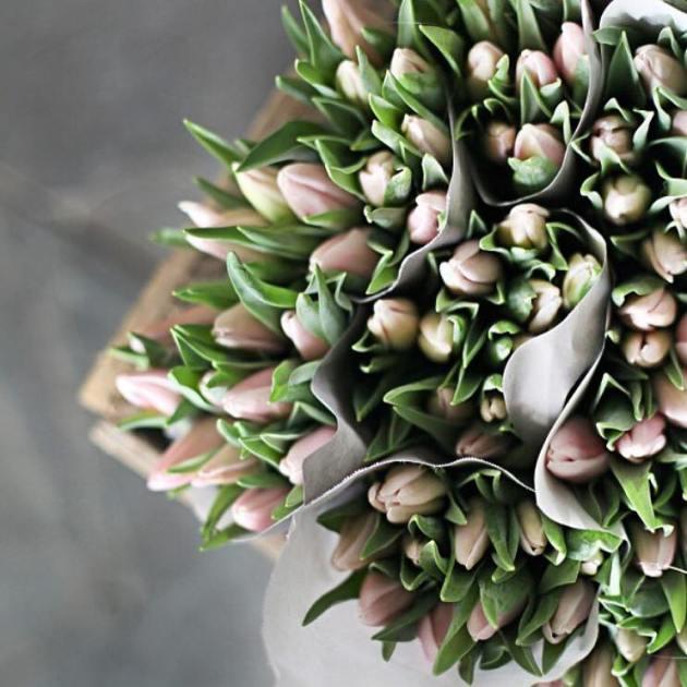 florentes-1