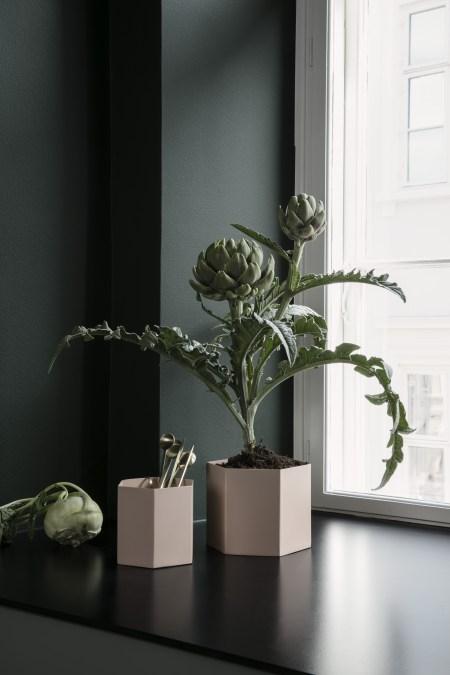 glass-thomsen-2-plantbox rosa